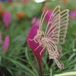Насекомо Бабочка малая/09775/ Wooden Toy